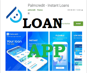 Palmcredit Loan Registration Portal