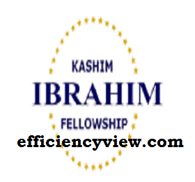 Photo of Kaduna State Graduates Kashim Ibrahim Fellowship Program 2020 register here via online
