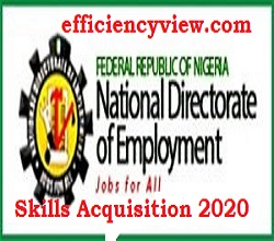 Photo of National Directorate of Employment NDE Skills Acquisition 2020/2021 for Nigerian Youths apply here