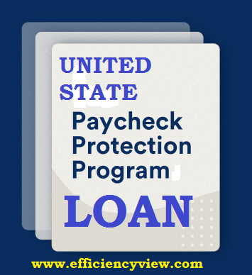 Photo of How to apply for United State Paycheck Protection Program Loan via Portal 2020/2021