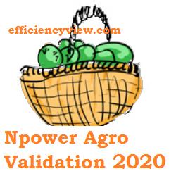 Npower Agro Validation Registration 2020